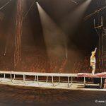 Die neue Flic Flac X-Mas Show Dortmund