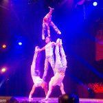 Roncalli's Apollo Varieté: Burlesque (Man's World)