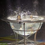 Waterbowl-Show mit dem Duo Splash