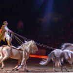 CAVALLUNA − Passion of horses »Welt der Fantasie«