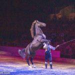cavalluna_welt-der-fantasie_Pferdedressur mit Filipe Fernandes