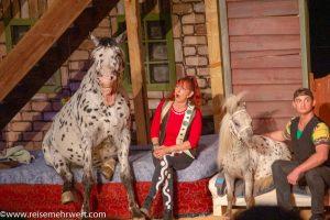 Tierdressur-Show »Dogs und Horses«