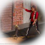 Tierdressur-Show »Dogs und Horses« - Tiertrainerin Rosi Hochegger