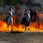 »Action, Stunts und Cascadeure« in der Rodeo-Arena
