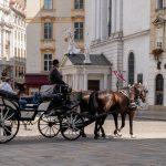 Flusskreuzfahrt-MS-Albertina-2021 - Pferdekutsche vor der Wiener Hofburg